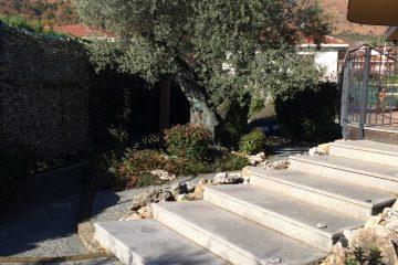 Giardino stile mediterraneo